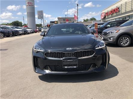2019 Kia Stinger  (Stk: 047601) in Milton - Image 2 of 20