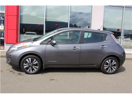 2017 Nissan LEAF SV (Stk: P0199) in Nanaimo - Image 2 of 9