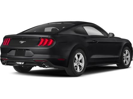 2019 Ford Mustang EcoBoost (Stk: MB008) in Sault Ste. Marie - Image 2 of 10