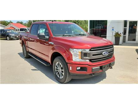2019 Ford F-150 XLT (Stk: F1345) in Bobcaygeon - Image 2 of 21