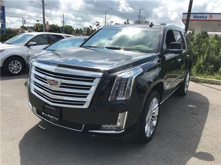 2019 Cadillac Escalade Platinum (Stk: R267853) in Newmarket - Image 1 of 22