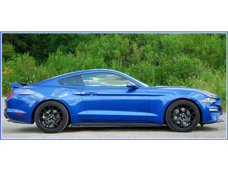 2018 Ford Mustang EcoBoost Premium (Stk: 148540) in Kitchener - Image 2 of 17