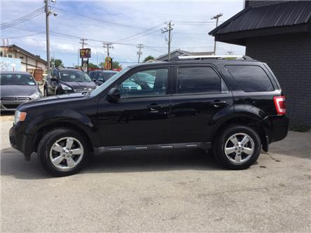 2010 Ford Escape Limited (Stk: ) in Winnipeg - Image 2 of 16