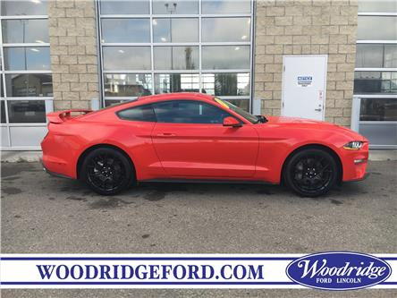 2018 Ford Mustang EcoBoost (Stk: JK-366A) in Calgary - Image 2 of 20