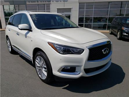 2019 Infiniti QX60 Pure (Stk: 20050A) in Hebbville - Image 1 of 30