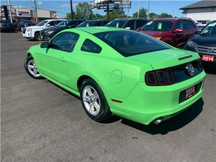 2014 Ford Mustang  (Stk: 5234519) in Orleans - Image 2 of 25