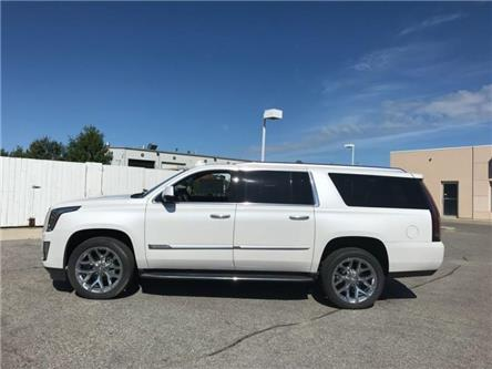 2019 Cadillac Escalade ESV Luxury (Stk: R233458) in Newmarket - Image 2 of 21