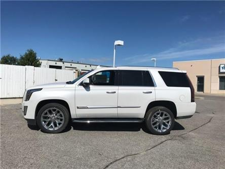 2019 Cadillac Escalade Luxury (Stk: R268659) in Newmarket - Image 2 of 22