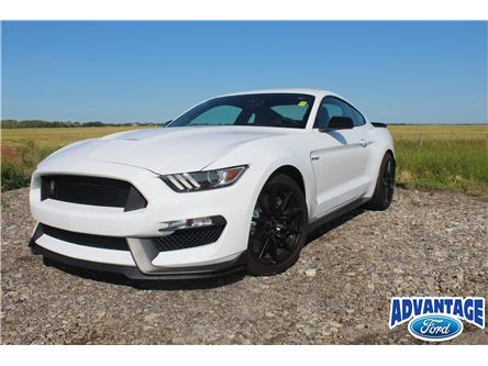 2017 Ford Shelby GT350 Base (Stk: 5528) in Calgary - Image 2 of 25