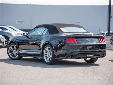 2019 Ford Mustang EcoBoost Premium (Stk: 19MU823) in St. Catharines - Image 2 of 23
