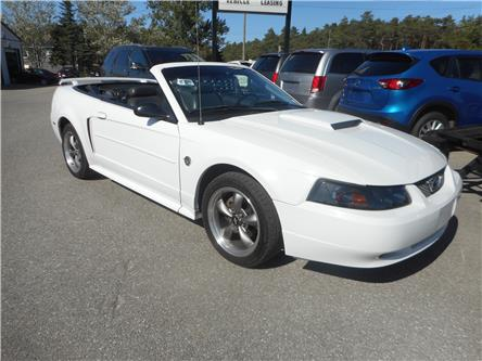 2004 Ford Mustang GT (Stk: ) in Cameron - Image 2 of 12