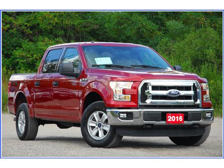 2016 Ford F-150 XLT (Stk: D95270A) in Kitchener - Image 1 of 17