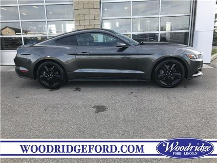 2017 Ford Mustang EcoBoost Premium (Stk: K-2090A) in Calgary - Image 2 of 21
