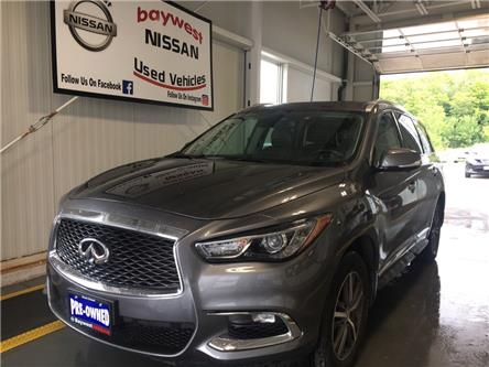 2019 Infiniti QX60 Pure (Stk: P0699) in Owen Sound - Image 1 of 13
