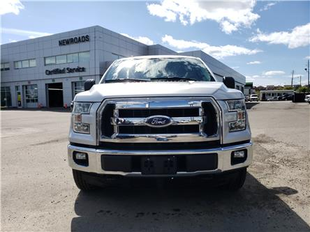 2016 Ford F-150 XLT (Stk: N13503AA) in Newmarket - Image 2 of 27