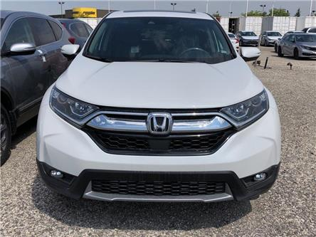 2019 Honda CR-V EX-L (Stk: I191155) in Mississauga - Image 2 of 5