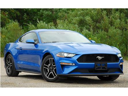 2019 Ford Mustang EcoBoost Premium (Stk: 148850) in Kitchener - Image 1 of 15