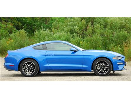 2019 Ford Mustang EcoBoost Premium (Stk: 148850) in Kitchener - Image 2 of 15