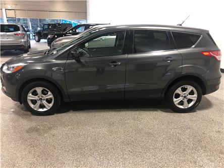 2016 Ford Escape SE (Stk: B12160) in Calgary - Image 2 of 14