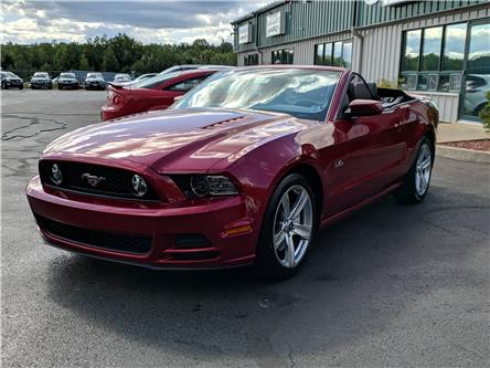 2014 Ford Mustang GT (Stk: 10537) in Lower Sackville - Image 1 of 19