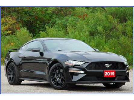 2019 Ford Mustang EcoBoost Premium (Stk: D95800A) in Kitchener - Image 1 of 17