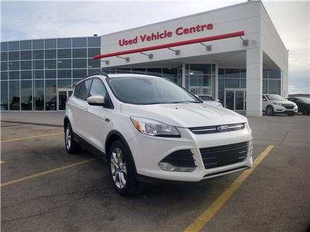 2013 Ford Escape SEL (Stk: U194255V) in Calgary - Image 1 of 26