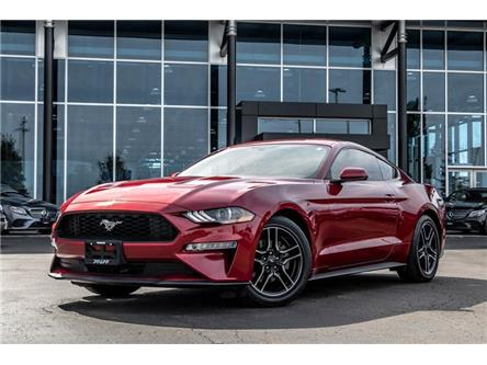 2019 Ford Mustang EcoBoost (Stk: 38711A) in Kitchener - Image 1 of 22