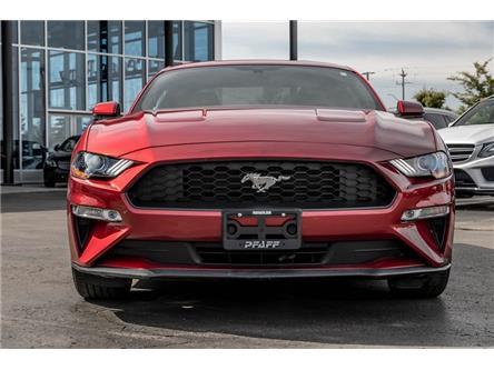 2019 Ford Mustang EcoBoost (Stk: 38711A) in Kitchener - Image 2 of 22