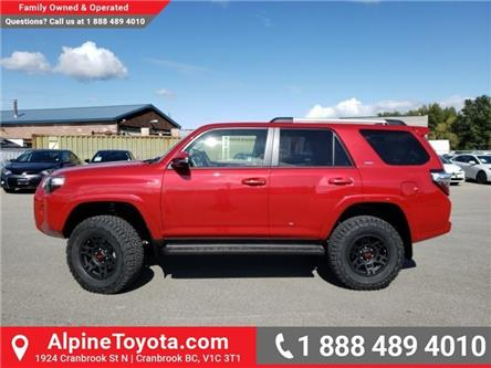 2019 Toyota 4Runner SR5 (Stk: 5736870) in Cranbrook - Image 2 of 24