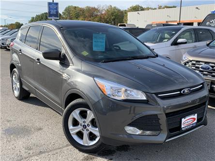 2015 Ford Escape SE (Stk: 19T1101A) in Midland - Image 1 of 14