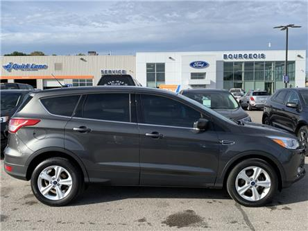 2015 Ford Escape SE (Stk: 19T1101A) in Midland - Image 2 of 14