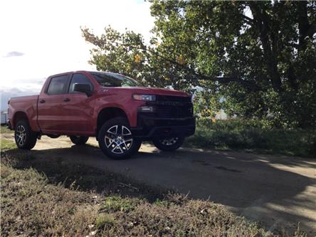 2020 Chevrolet Silverado 1500 Silverado Custom Trail Boss (Stk: 210222) in Brooks - Image 1 of 23