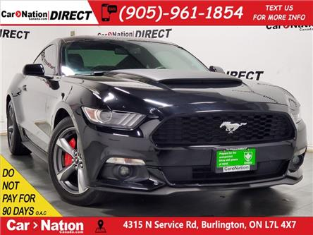 2017 Ford Mustang V6 (Stk: DRD2295A) in Burlington - Image 1 of 32
