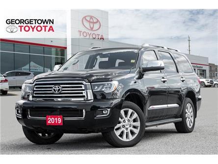 2019 Toyota Sequoia Platinum 5.7L V8 (Stk: 9SQ228) in Georgetown - Image 1 of 22