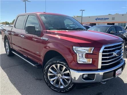 2017 Ford F-150 XLT (Stk: 19T1098A) in Midland - Image 1 of 16