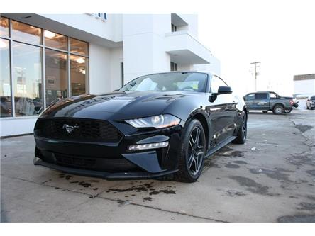 2019 Ford Mustang EcoBoost (Stk: C191052) in Dawson Creek - Image 2 of 13