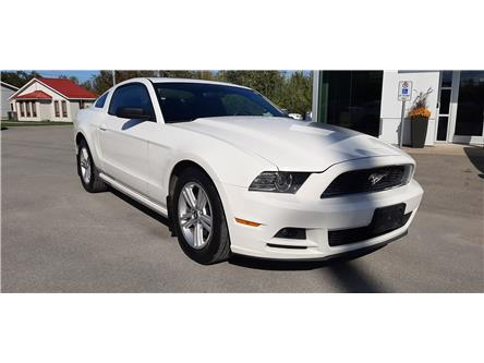 2013 Ford Mustang V6 (Stk: ED1360A) in Bobcaygeon - Image 1 of 18