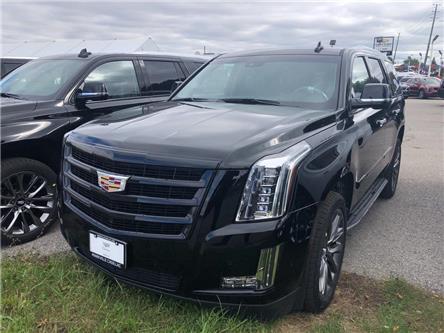 2019 Cadillac Escalade Luxury (Stk: 384901) in Markham - Image 1 of 5