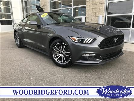 2016 Ford Mustang EcoBoost (Stk: KK-338A) in Calgary - Image 1 of 21
