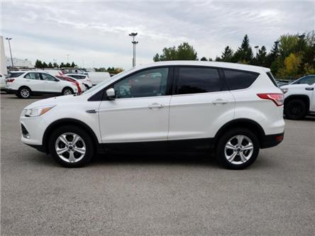 2014 Ford Escape SE (Stk: 132657) in London - Image 2 of 13