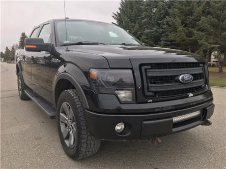 2014 Ford F-150 FX4 (Stk: T19-183B) in Nipawin - Image 1 of 24