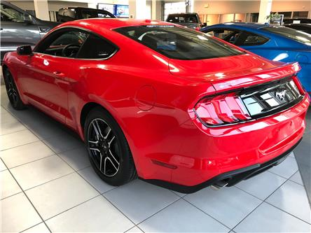 2019 Ford Mustang EcoBoost (Stk: 19483) in Vancouver - Image 2 of 6