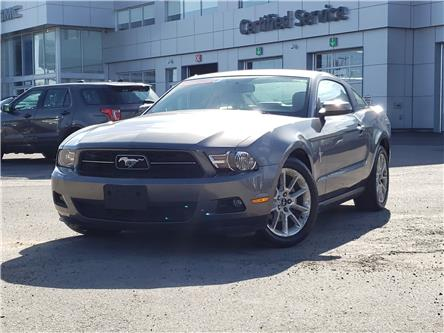 2010 Ford Mustang V6 (Stk: B885377A) in Newmarket - Image 1 of 25