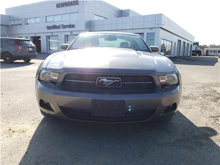 2010 Ford Mustang V6 (Stk: B885377A) in Newmarket - Image 2 of 25