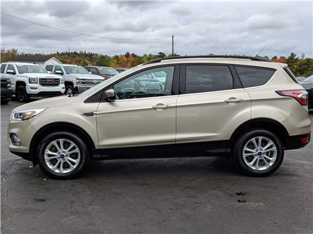 2017 Ford Escape SE (Stk: 10561) in Lower Sackville - Image 2 of 15