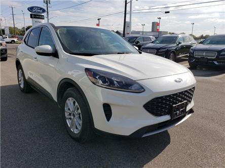 2020 Ford Escape SE (Stk: VEP18855) in Chatham - Image 2 of 12