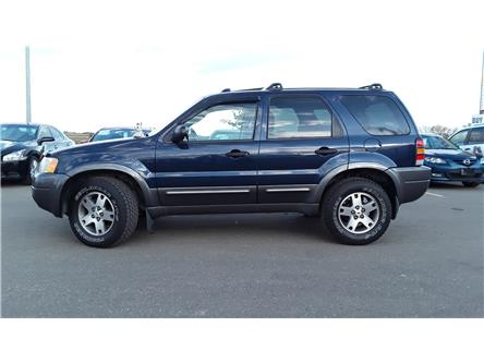 2004 Ford Escape XLT (Stk: P571) in Brandon - Image 2 of 22