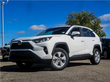 2019 Toyota RAV4 XLE (Stk: 95618) in Waterloo - Image 1 of 20