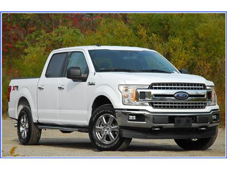 2019 Ford F-150 XLT (Stk: D95780B) in Kitchener - Image 1 of 18