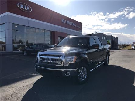 2014 Ford F-150 XLT (Stk: P0416) in Calgary - Image 1 of 26